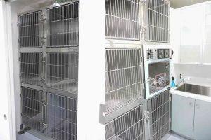 横浜 金沢区の動物病院 マーサ動物病院 医療設備