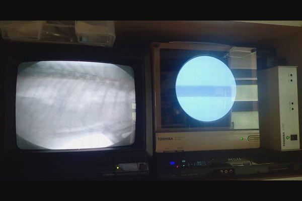 横浜 金沢区の動物病院 マーサ動物病院 医療設備 X線撮影および透視装置