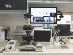 横浜 金沢区の動物病院 マーサ動物病院 医療設備 ビデオ顕微鏡システム