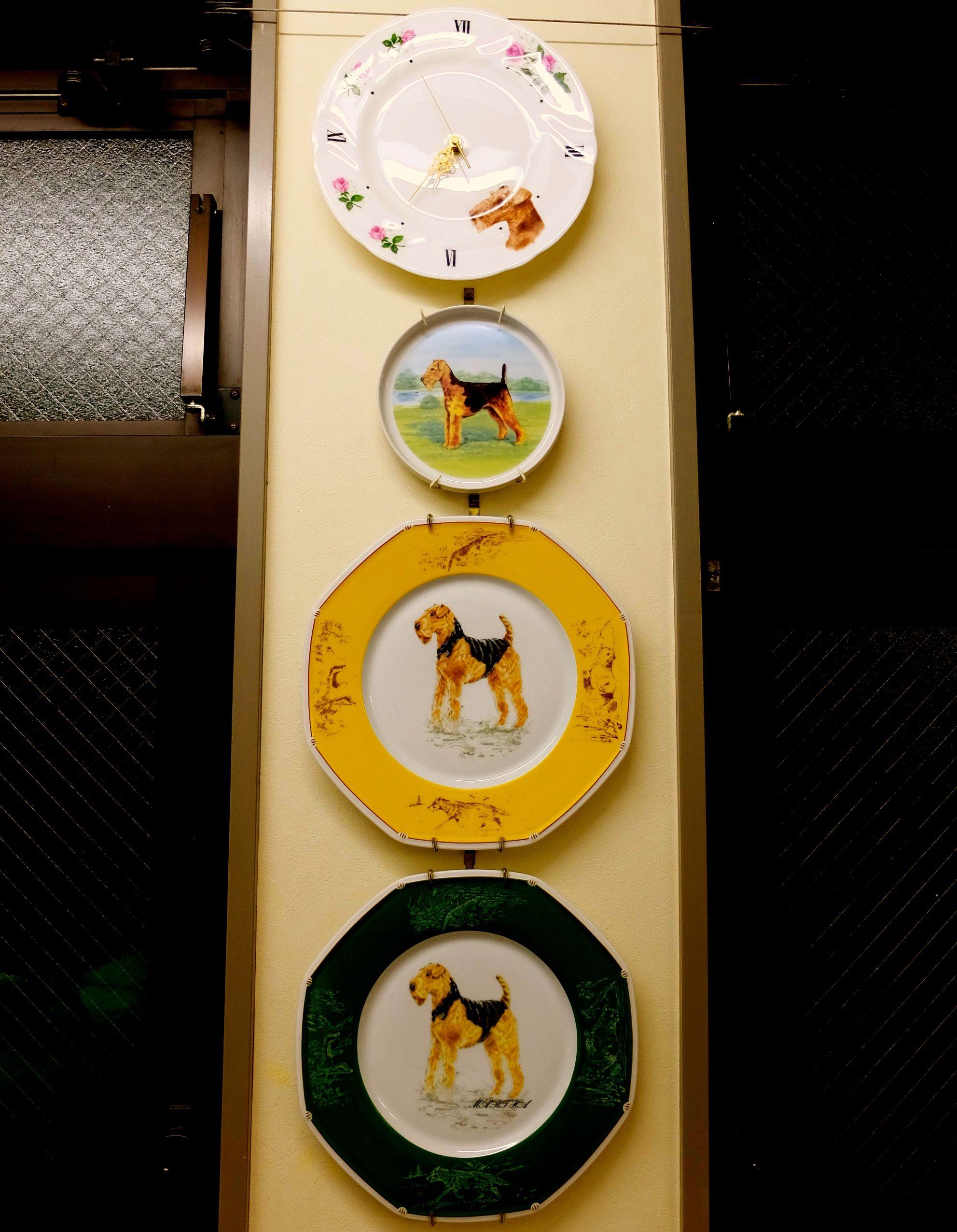 横浜 金沢区の動物病院 マーサ動物病院 動物医療センター