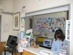 横浜 金沢区の動物病院 マーサ動物病院 本院