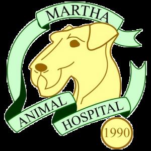 横浜 神奈川区の動物病院 マーサ動物病院本院