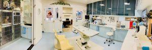 横浜 金沢区の動物病院 マーサ動物病院動物医療センター 診療室