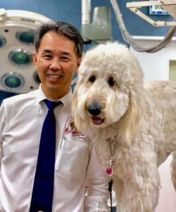 横浜 金沢区の動物病院 マーサ動物病院